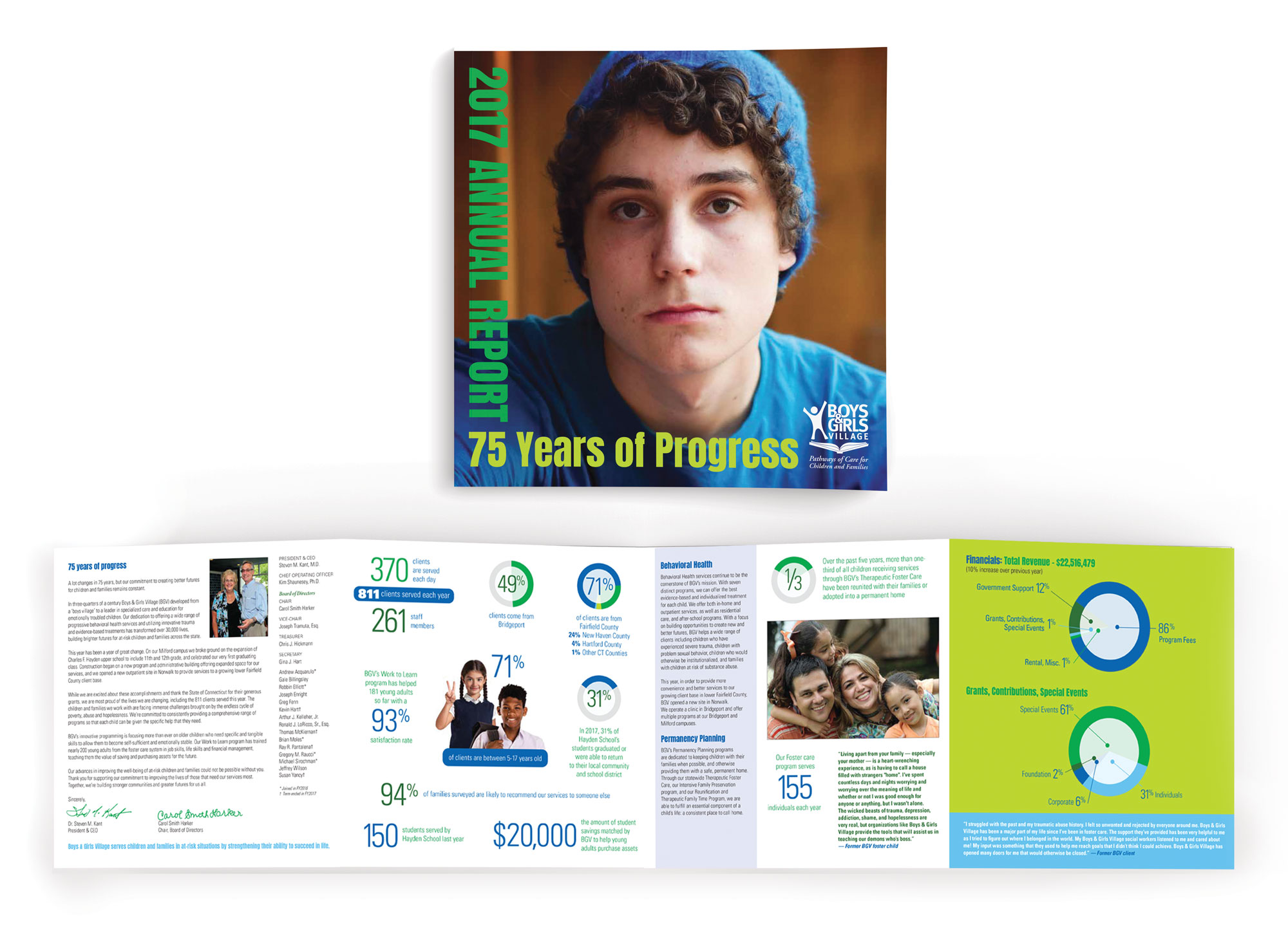 annual report design, document design, infographics, non profit designer, milford, ct